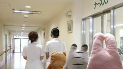 일본에서 운영 중인 이 병원은 모든 것이 정말 사랑스럽다