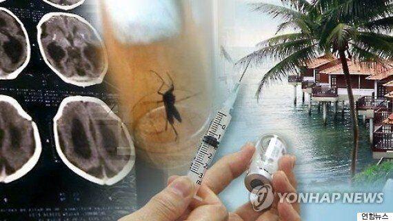 가을에 모기를 더 조심해야 하는 이유가