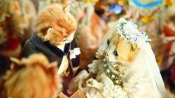 이 고양이들의 결혼식은 과거의 사람들이 죽음을 어떻게 여겼는지