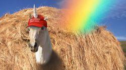 도널드 트럼프를 지지하는 레즈비언을