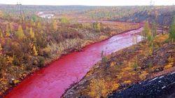 러시아의 어느 강에는 '핏빛' 강물이