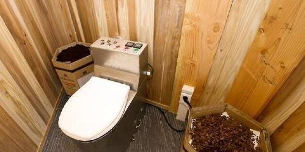 대변 보면 돈 주는 화장실, 중국에