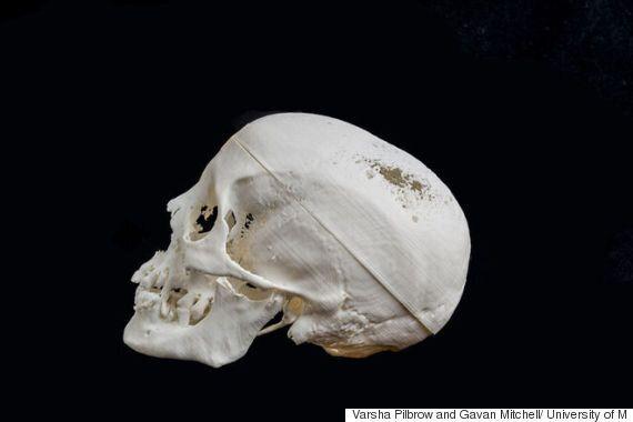 3D 프린터로 재현한 2,000년 된 미라가 여인으로 바뀌는 과정을
