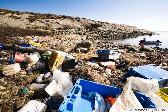지구가 인간 활동의 산물인 플라스틱, 비료, 닭뼈로 뒤덮인 시대를 '인류세'로 정의하자는 주장이