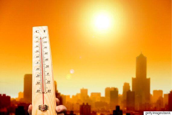 마침내 40도가 넘은 지역이 나왔다 : 경북 경산 40.3도로 최고점을