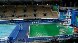 리우올림픽 수영장 물이 녹색으로