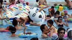 도쿄의 워터파크에서 여성 9명의 엉덩이 살이 잘리는 일이