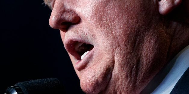 Republican presidential candidate Donald Trump speaks during a campaign rally, Friday, Aug. 5, 2016,...