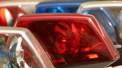 음란행위를 하던 남성이 경찰 체포 직후