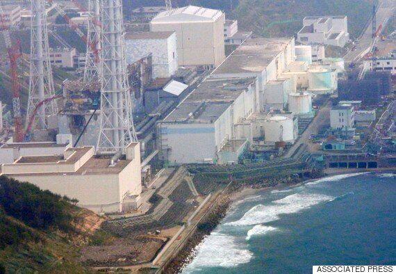 일본 후쿠시마 원전 부지에도 '포켓몬'이