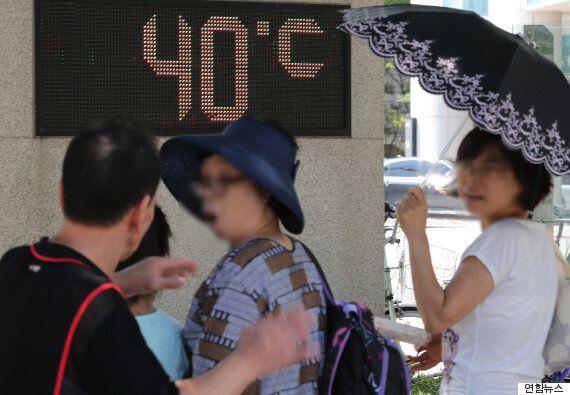 서울 올해 최고 기온을