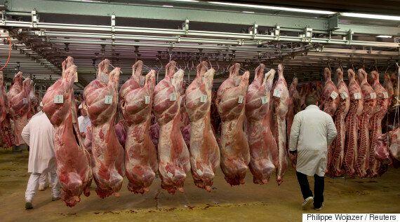 육식을 하는 사람들은 채식주의자들의 말을 들어야