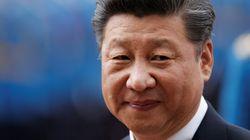 새로 발견한 곤충에 '시진핑' 이름을 붙인 중국
