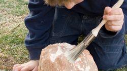 4살 소년이 50만년 전 화석