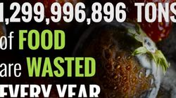 미국의 '식량 쓰레기 줄이기' 캠페인을 우리도 눈여겨봐야 하는