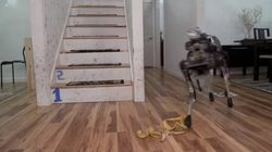 이번에는 로봇을 바나나 껍질에 미끄러지게