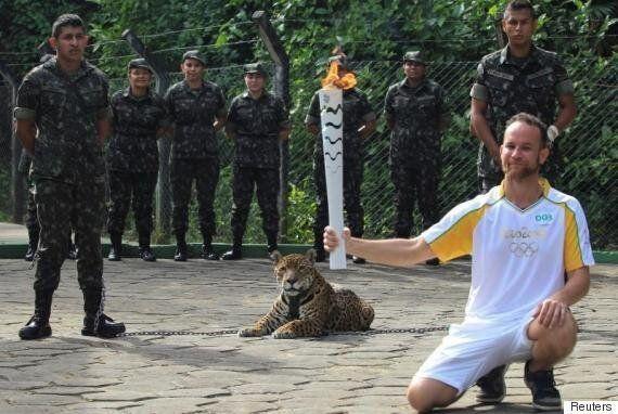브라질 리우올림픽 성화 봉송에 '마스코트'로 동원된 재규어가