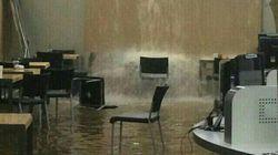 폭우가 내렸고, 연세대 도서관은 '연터파크'가