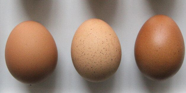 여름에 계란 껍질을 씻어 먹어야 하는