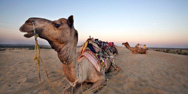 Jaisalmer, Rajasthan,