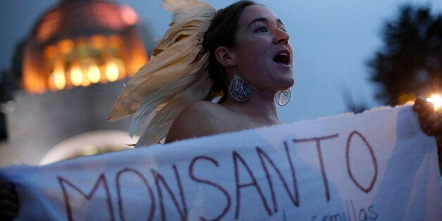 A demonstrator holds a banner protesting against Monsanto Co during an event
