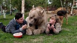 새끼 곰을 입양해 23년 동안 함께 살아온 러시아