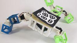 두 로봇이 만나 로봇을 '낳는' 기술이