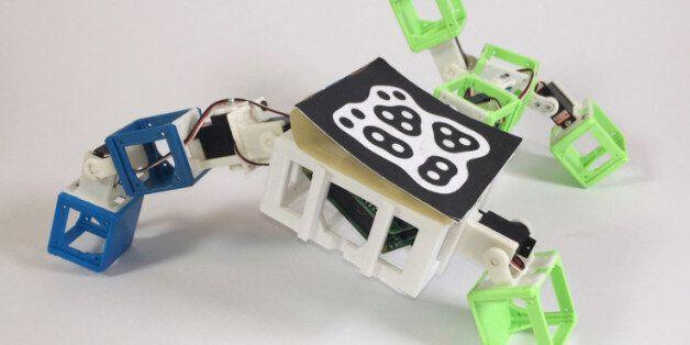 로봇과 로봇이 만나 2세 로봇을 '낳는' 기술이
