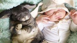 이 아기의 생애 첫 친구는