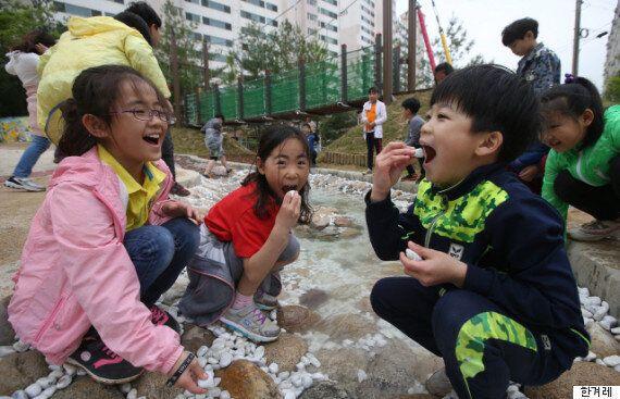 순천에 가면 어린이들이 직접 설계 아이디어를 낸 '기적의 놀이터'가