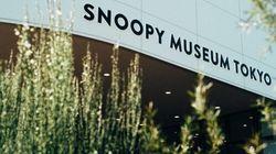 세계 최초 스누피 박물관이