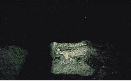 속리산·월출산에 멸종위기종이