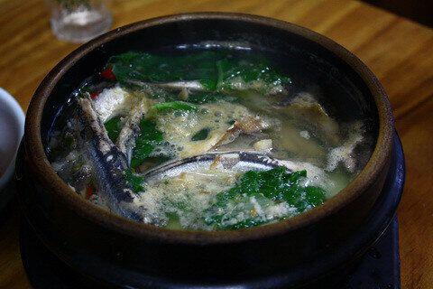 여의도·제주·경포대·제천·진해 벚꽃축제에서 갈 수 있는 맛집