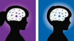 뇌에 대한 6가지