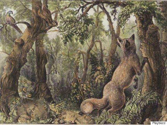 이 그림에는 총 16마리의 동물이 숨어있다