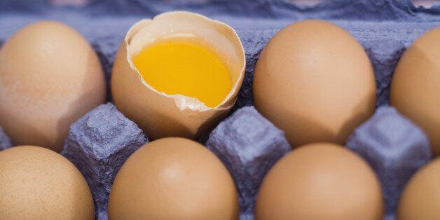 달걀 한 개로도 두툼한 계란말이를 만드는