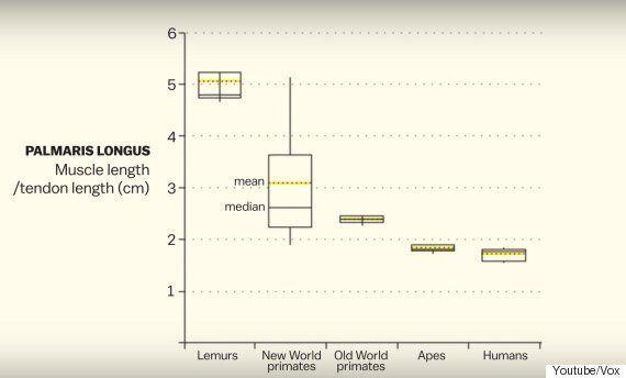 당신이 진화한 인류인지 알아볼 수 있는 간단한