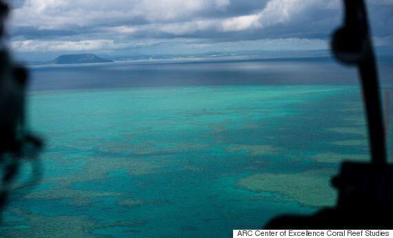 호주 그레이트 배리어 리프의 산호초 표백 현상을 담은 영상은