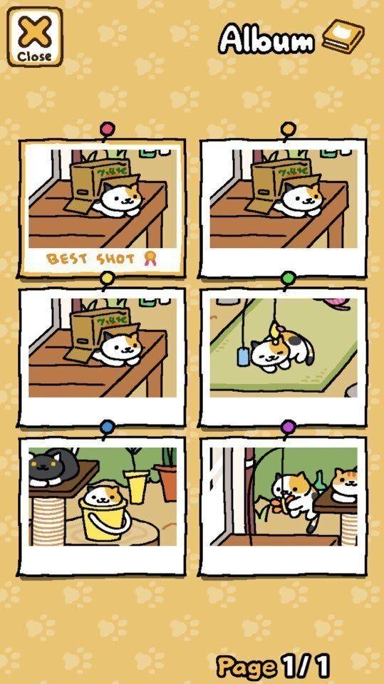 전 세계가 '고양이 수집' 게임에 폭 빠지게 된