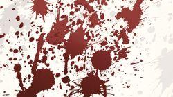 2015년 남편·애인 등에게 피살된 한국 여성의