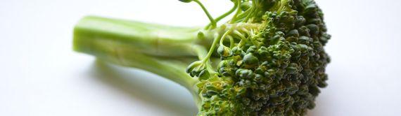 미세먼지 피해를 줄이는 음식