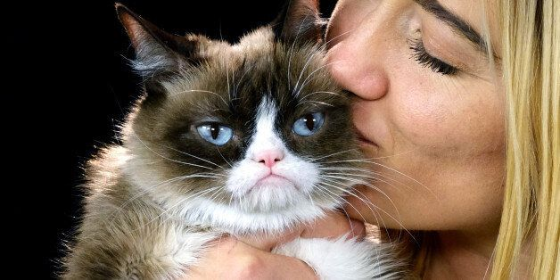 This Dec. 1, 2015 photo shows Grumpy Cat with her owner Tabitha Bundesen during an interview at the Associated...