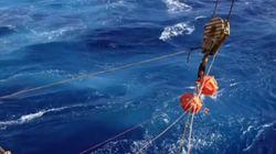 수심 11km, 마리아나 해구의 심연에선 어떤 소리가