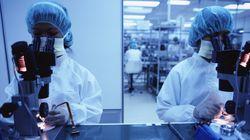 삼성·LG 협력업체 파견노동자 '독성물질