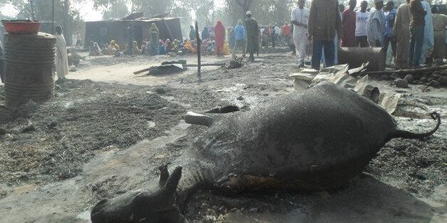 People gather around a dead animal and burnt out houses following an attack by Boko Haram in Dalori village...