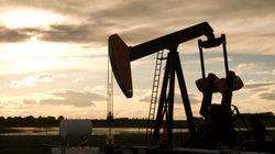 세계 1·2위 석유 수출국, 산유량 동결