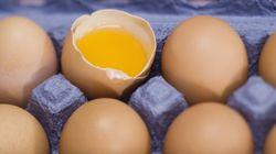 계란의 신선도를 눈으로 확인하는