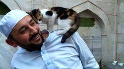 추위에 떠는 길고양이를 위해 문을 열어준 모스크 사원(사진,