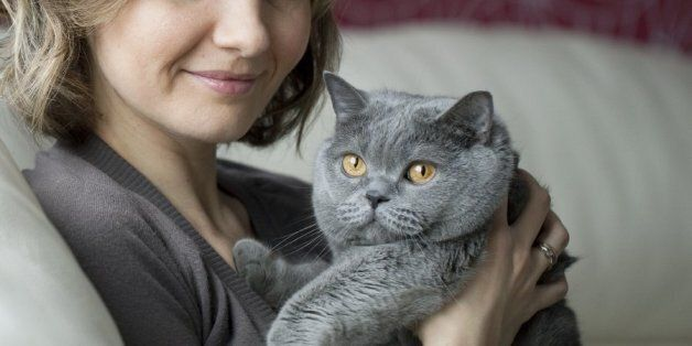 고양이 반려인이 임신 전에 반드시 알아야 할