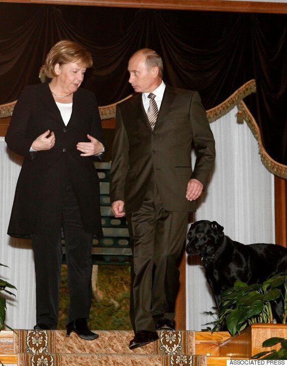 푸틴, 9년 만에 '메르켈 개 위협 사건'을